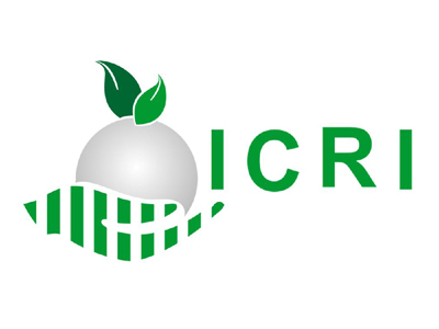 INSTITUTE OF CERTIFIED RESPONSIBLE INVESTMENTS
